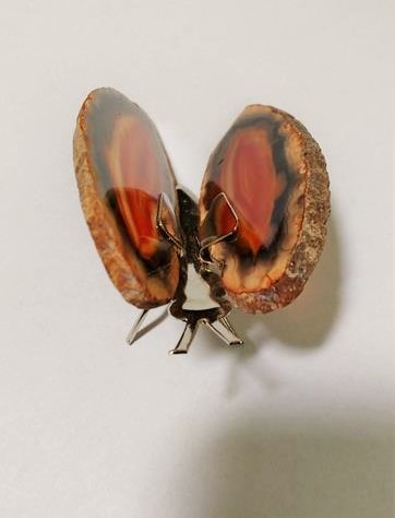 Stones from Uruguay - Red Agate Slice Butterfly (#0)